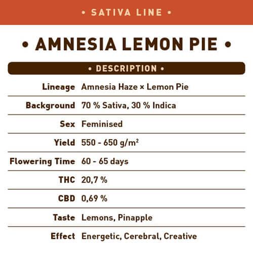 Amnesia Lemon Pie2