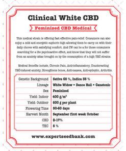 Clinical White CBD1