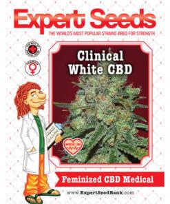 Clinical White CBD2