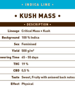 Kush Mass1
