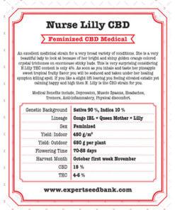 Nurse Lilly CBD2