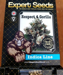 Respect 4 Gorilla1
