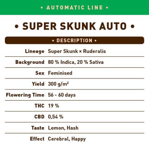 Super Skunk Auto1 1