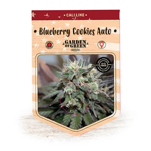 blueberry cookies auto