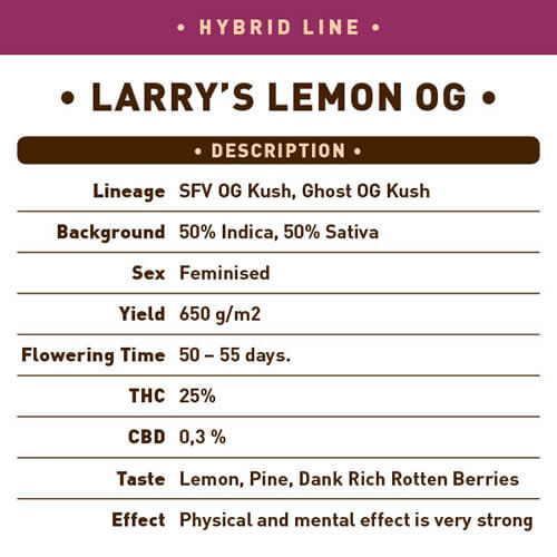 Larrys Lemon OG1