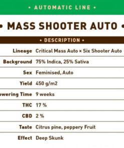 Mass Shooter Auto1