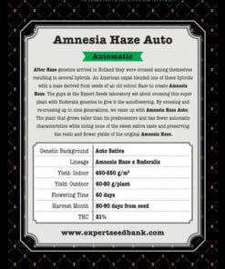 amnesia haze auto bulk2