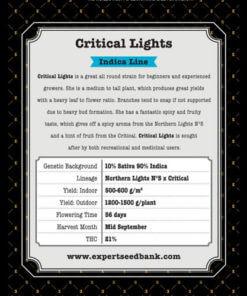 critical lights bulk2