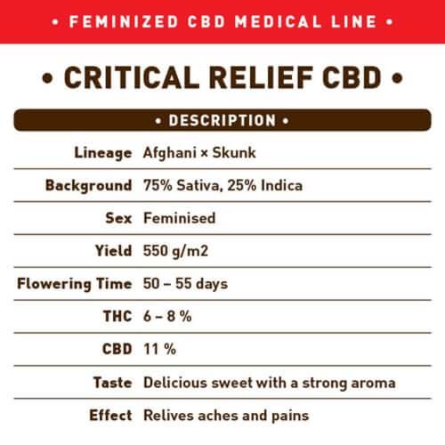 critical relief cbd bulk1