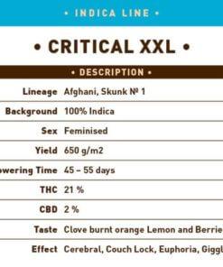 critical xxl bulk1