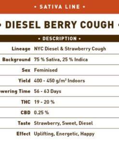 diesel berry cough bulk1