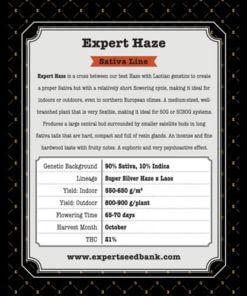 expert haze bulk2