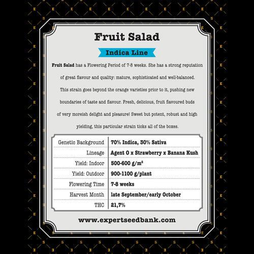 fruit salad bulk2