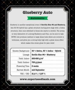 glueberry auto bulk2
