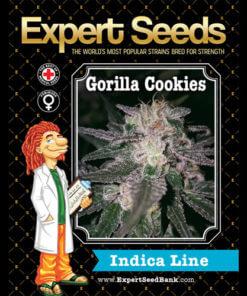 gorilla cookies bulk1