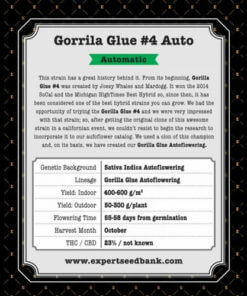 gorrila glue 4 auto bulk2