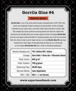 gorrila glue 4 bulk2