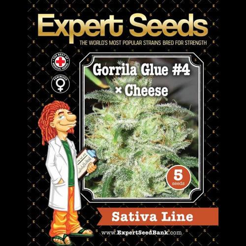 gorrila glue 4 x cheese bulk1