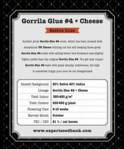 gorrila glue 4 x cheese bulk2