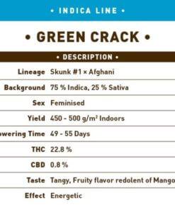 green crack bulk1