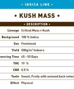 kush mass bulk1