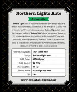 northern lights auto bulk2