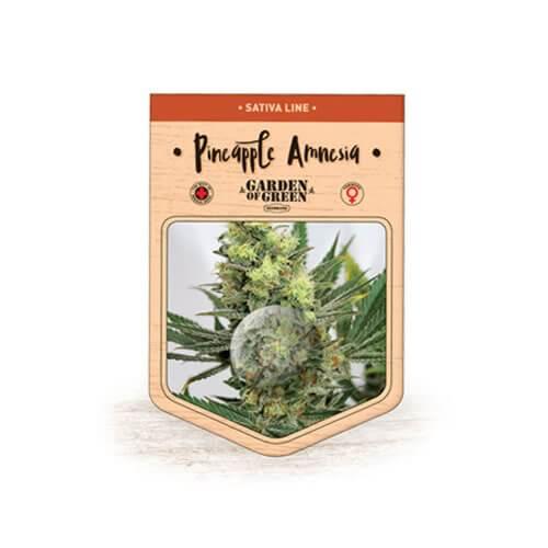 pineapple amnesia bulk