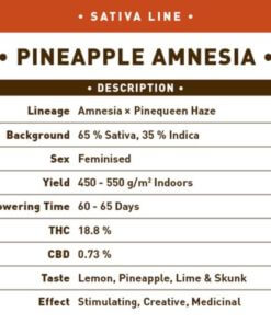 pineapple amnesia bulk1