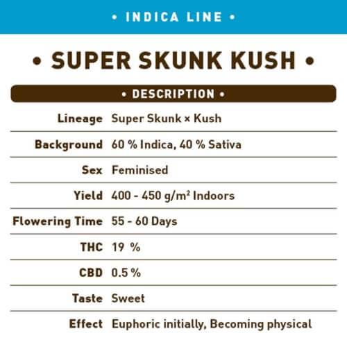 super skunk kush bulk1