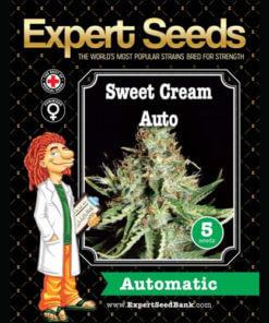 sweet cream auto bulk1