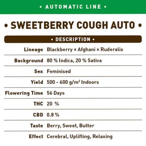 sweetberry cough auto bilk1