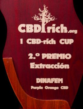 Dinafem-Purple_Orange_CBD-CBD_Cannabis_Seeds-Irish-Seed-Bank