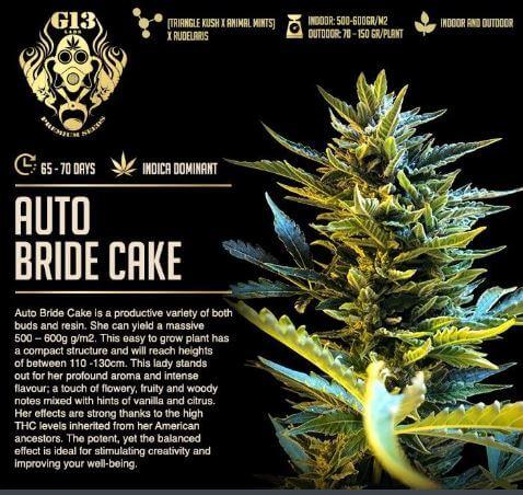 auto bride cake